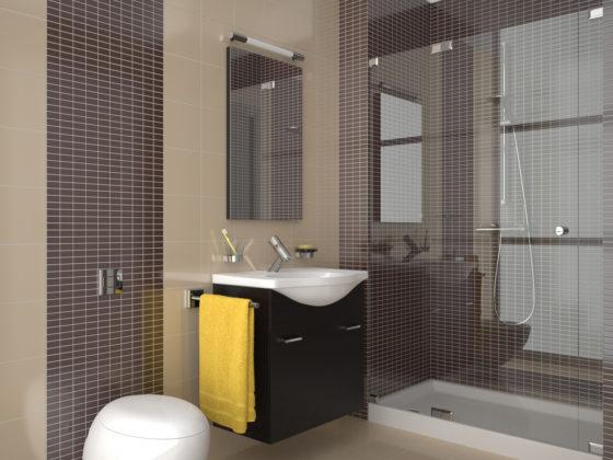 Exemplu baie mozaic