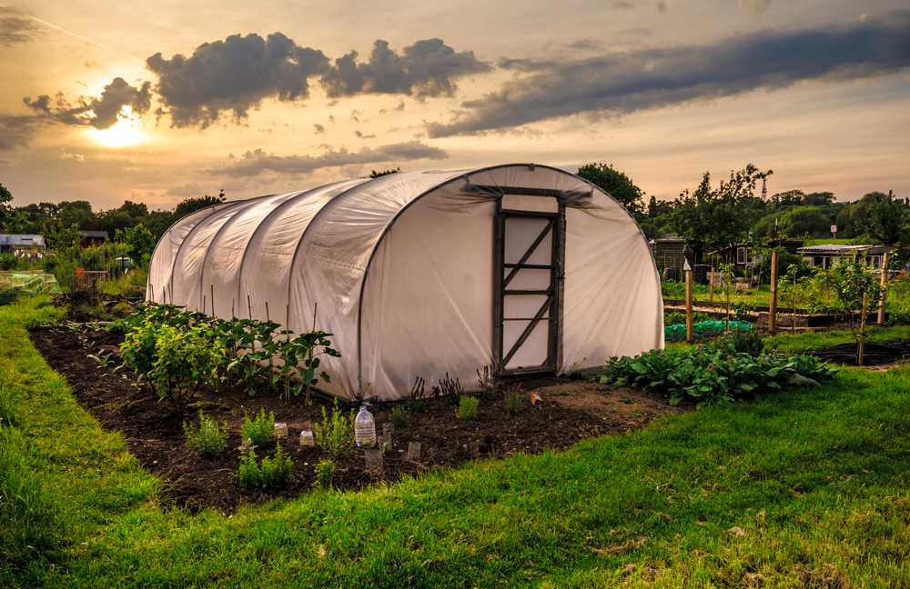Tipuri de solarii pe care le poti construi - tip tunel sau in doua pante