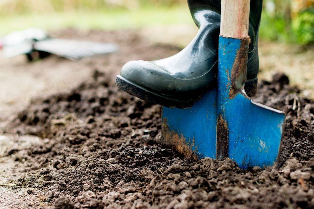 Pregatirea solului